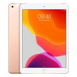 APPLE iPAD 10,2PO OR 32GO (WiFi + CEL) 2019